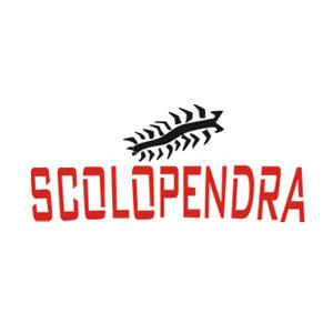Scolopendra Bologna