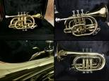 Eastman ETT401 - [big pocket] Tromba Sib GoldBrass