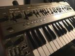 ROLAND SH 101 COME NUOVA CON CASE E MODULATION GRIP