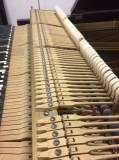 pianoforte a coda bluthner 190 cm inizi novecento
