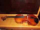 violino-stagg-in-abete-massello