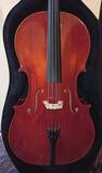 vendo violoncello