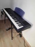 pianoforte dgt kurzweil