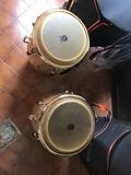 congas latin percussion