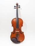 violino-prokop