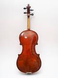 violino liuteria boema